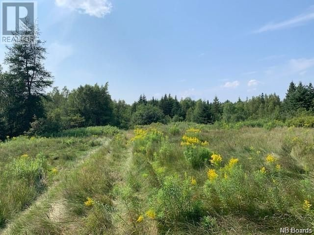 Main Photo: 1 Larmer Road in St. Stephen: Vacant Land for sale : MLS®# NB062186