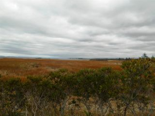 Photo 3: lot Patrice Road in Church Point: 401-Digby County Vacant Land for sale (Annapolis Valley)  : MLS®# 201729027