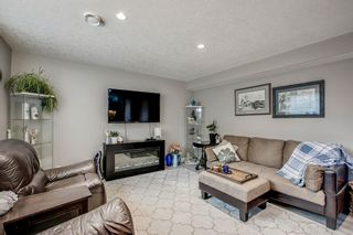 Photo 41: 234 Canoe Square SW: Airdrie Detached for sale : MLS®# A1043547