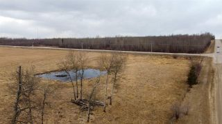 Photo 6: Hwy 780 Twp Rd 470: Rural Wetaskiwin County Rural Land/Vacant Lot for sale : MLS®# E4235412