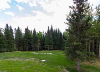 Photo 38: 231065 Range Road 54: Bragg Creek Detached for sale : MLS®# A1114176