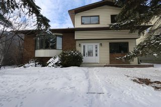 Photo 1: 547 Templeby Place NE in Calgary: Temple Detached for sale : MLS®# A1071164