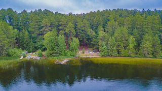Photo 40: LK283 Summer Resort Location in Boys Township: Retail for sale : MLS®# TB212151