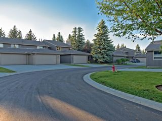 Photo 45: 51 1901 VARSITY ESTATES Drive NW in Calgary: Varsity House for sale : MLS®# C4121820