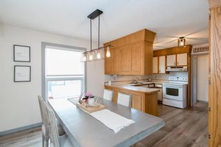 Photo 10: 131 Hillview Avenue in East St Paul: Birds Hill Town Residential for sale (3P)  : MLS®# 202110748