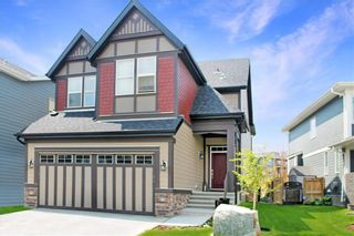 Photo 24: 17 MASTERS Common SE in Calgary: Mahogany Detached for sale : MLS®# C4255952
