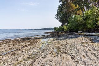Photo 82: 1290 Lands End Rd in : NS Lands End House for sale (North Saanich)  : MLS®# 880064