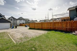 Photo 26: 71 Masters Link SE in Calgary: Mahogany Detached for sale : MLS®# A1107268