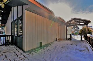 Photo 30: 3028 33A Avenue SE in Calgary: Dover Detached for sale : MLS®# A1069811
