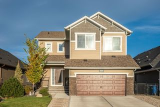 Photo 1: 373 Bayside Crescent SW: Airdrie Detached for sale : MLS®# A1151568