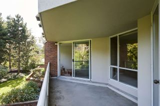 Photo 17: 314 518 MOBERLY ROAD in Vancouver: False Creek Condo for sale (Vancouver West)  : MLS®# R2404067