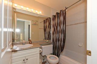 Photo 5: 6 11165 Gilker Hill Road in KANAKA CREEK ESTATES: Home for sale : MLS®#  V930024