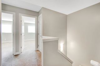 Photo 14: 3924 6 Street in Edmonton: Zone 30 House Half Duplex for sale : MLS®# E4264000