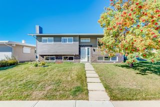 Main Photo: 1035 Motherwell Road NE in Calgary: Mayland Heights Detached for sale : MLS®# A1139670