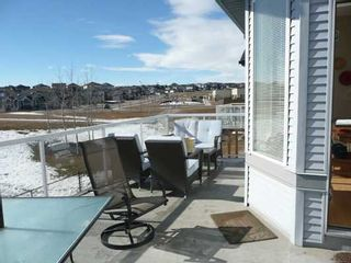 Photo 11: 29 ROYAL BIRCH Heights NW in CALGARY: Royal Oak Residential Detached Single Family for sale (Calgary)  : MLS®# C3469939
