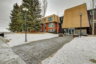 Photo 27: 301 315 50 Avenue SW in Calgary: Windsor Park Apartment for sale : MLS®# A1046281