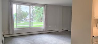 Photo 8: 101 3506 44 Street SW in Calgary: Glenbrook Apartment for sale : MLS®# A1116241