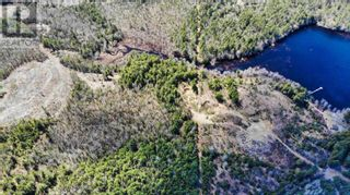 Photo 8: acreage 930 Road in Buckfield: Vacant Land for sale : MLS®# 202108244