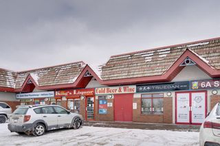 Photo 45: 6139 Buckthorn Road NW in Calgary: Thorncliffe Detached for sale : MLS®# A1070955