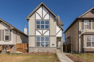 Photo 27: 38 CRANBERRY Close SE in Calgary: Cranston Detached for sale : MLS®# C4297367