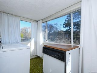 Photo 18: 905 Lawndale Ave in Victoria: Vi Fairfield East House for sale : MLS®# 838494