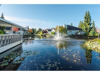 """Photo 29: 76 5550 LANGLEY Bypass in Langley: Langley City Townhouse for sale in """"Riverwynde"""" : MLS®# R2520087"""