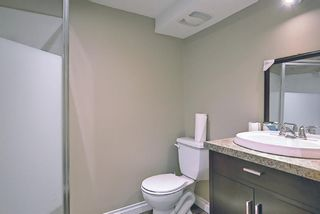 Photo 26: 420 Thornhill Place NW in Calgary: Thorncliffe Detached for sale : MLS®# A1146639