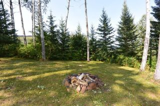 Photo 34: 2828 PTARMIGAN Road in Smithers: Smithers - Rural Manufactured Home for sale (Smithers And Area (Zone 54))  : MLS®# R2615113
