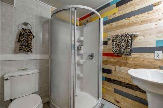 Photo 25: 8915 169 Street in Edmonton: Zone 22 House for sale : MLS®# E4209054