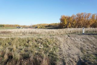 Photo 6: 17 53214 RR13: Rural Parkland County Rural Land/Vacant Lot for sale : MLS®# E4266457