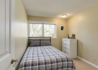 Photo 22: 2415 Paliswood Road SW in Calgary: Palliser Detached for sale : MLS®# A1095024