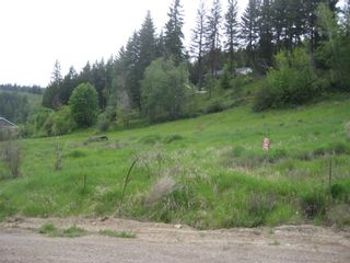 Photo 1: 2481 Squilax Anglemont Road # 2 in Lee Creek: Land Only for sale : MLS®# 10009047