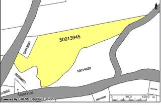 Photo 4: Lot Highway 19 in Long Point: 306-Inverness County / Inverness & Area Vacant Land for sale (Highland Region)  : MLS®# 202110514