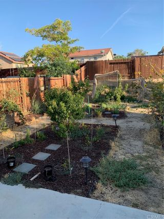 Photo 8: 210 E Avenue R2 in Palmdale: Residential for sale (PLM - Palmdale)  : MLS®# DW21157586