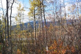 """Photo 9: Lot 5 OLD BABINE LAKE Road in Smithers: Smithers - Rural Land for sale in """"Driftwood"""" (Smithers And Area (Zone 54))  : MLS®# R2625264"""