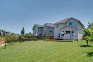 Photo 3: 160 Brightonstone Gardens SE in Calgary: New Brighton Detached for sale : MLS®# A1009065