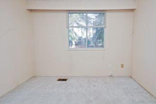 Photo 20: 21260 COOK Avenue in Maple Ridge: Southwest Maple Ridge House for sale : MLS®# R2530636