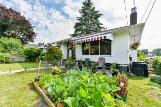 Photo 30: 420 WILSON Street in New Westminster: Sapperton House for sale : MLS®# R2473223