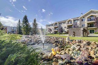Photo 10: 103 6623 172 Street in Edmonton: Zone 20 Condo for sale : MLS®# E4224265