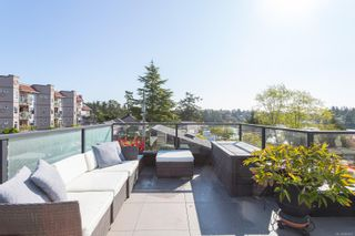 Photo 55: 101 Uganda Ave in : Es Kinsmen Park House for sale (Esquimalt)  : MLS®# 884915
