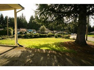 Photo 8: 4378 CHEVIOT Road in North Vancouver: Forest Hills NV House for sale : MLS®# V1111023