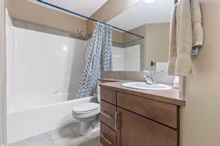 Photo 16: 211 37 Prestwick Drive SE in Calgary: McKenzie Towne Apartment for sale : MLS®# A1055114