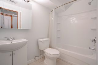 Photo 13: 87 Applebrook Circle in Calgary: Applewood Park Detached for sale : MLS®# A1144093