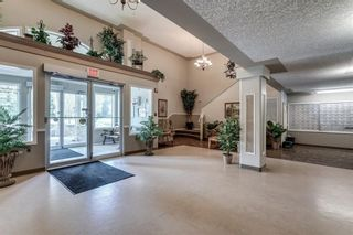 Photo 29: Calgary Real Estate - Millrise Condo Sold By Calgary Realtor Steven Hill or Sotheby's International Realty Canada Calgary
