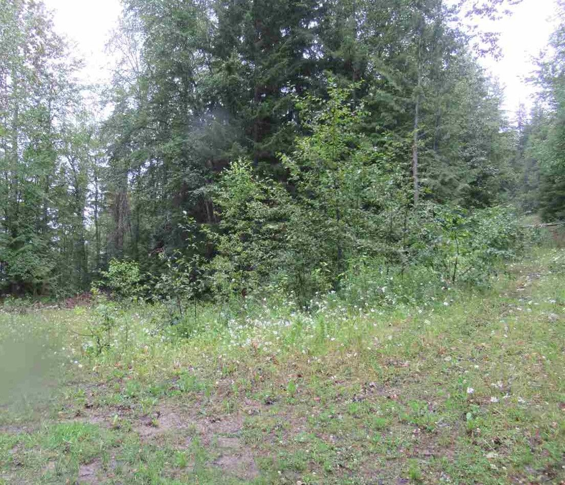 """Photo 18: Photos: LOT 3 HAGGENS POINT Road: Horsefly Land for sale in """"QUESNEL LAKE"""" (Williams Lake (Zone 27))  : MLS®# R2398733"""
