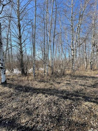 Photo 2: 65 acres land in Preeceville: Lot/Land for sale : MLS®# SK848653