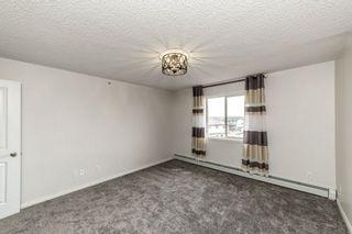 Photo 7: 329 16221 95 Street in Edmonton: Zone 28 Condo for sale : MLS®# E4257532