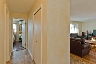 Photo 26: 6132 Penworth Road SE in Calgary: Penbrooke Meadows Detached for sale : MLS®# A1078757
