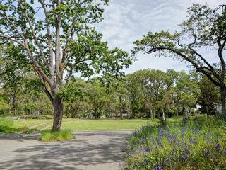 Photo 38: 1182 Clovelly Terr in Saanich: SE Maplewood House for sale (Saanich East)  : MLS®# 851566