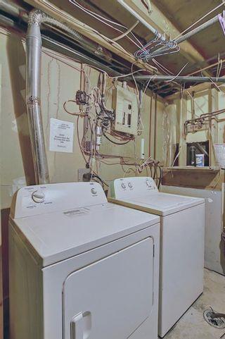 Photo 37: 80 Aberfoyle Close NE in Calgary: Abbeydale Detached for sale : MLS®# A1137613